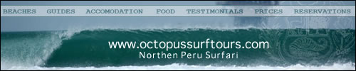 Octopus Surf Tours