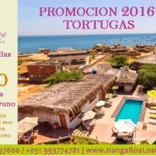 Special Price at Hanga Roa Los Organos
