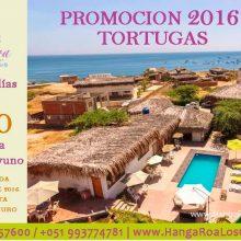 Special Price at Hanga Roa Los Organos