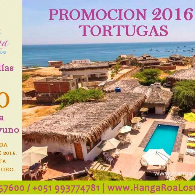 Promoción Tortugas de Hanga Roa en Los Organos