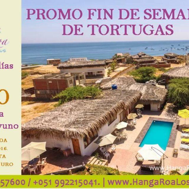 Promo Fin de Semana de Tortugas en Hanga Roa