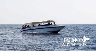 Yate Pacifico Adventures
