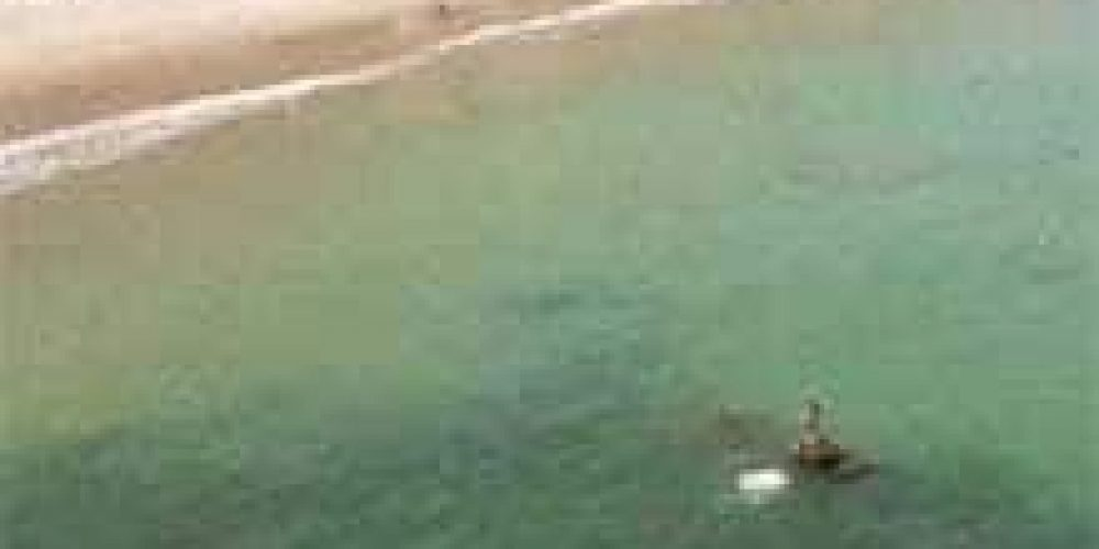 VIDEO: Tú eliges en Septiembre 2017 en Máncora o Punta Sal