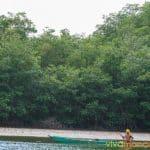 manglares-tumbes-5
